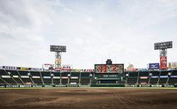 甲子園をオーロラビジョンでリモート応援しよう!高校野球動画放映